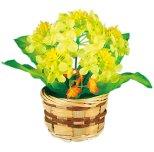 菜の花バスケット