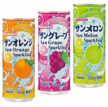サンガリア缶ジュース250ml1本