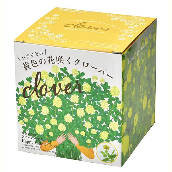 シアワセの黄色の花咲く クローバー栽培セット
