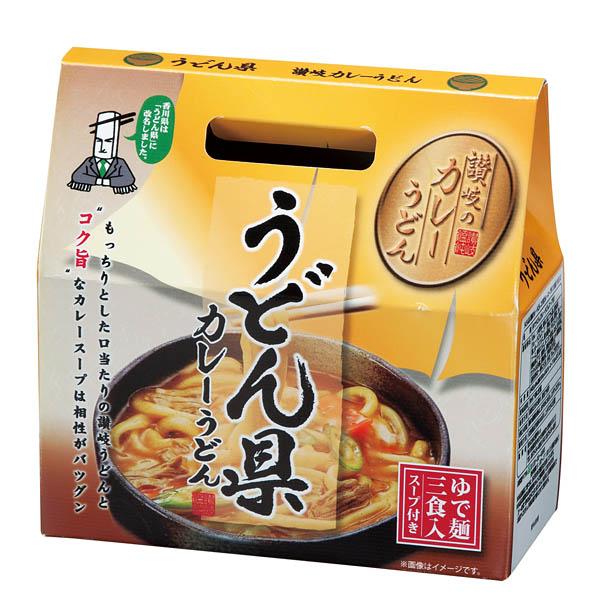 うどん県讃岐カレーうどん コク旨カレースープ付 3食組